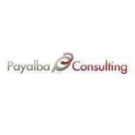 PAYALBA Consulting